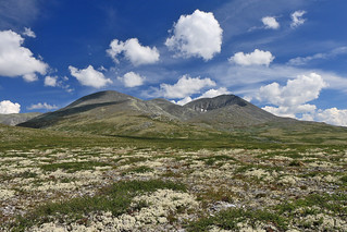 Norway - Rondane National Park