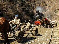 Off to the Woods (Kingmoor Klickr) Tags: vaser valley cff viseudesus romania carpathianmountains transylvania horsedrawn cart forest worker 764421 elvetia resita maramures