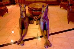 Dog Days (hectic skeptic - I've returned!) Tags: osceola nevada ghosttown prosectorsinn elynevada markamorgan twinfalls snakeriver