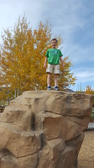Olsen on a rock (Aggiewelshes) Tags: october 2016 travel utah parkcity fall phone s6 olsen playground
