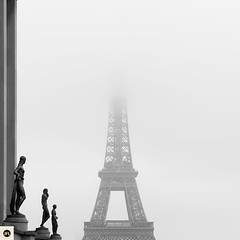 01t16 (photo & life) Tags: paris france europe ville city rue street streetphotography photography photolife jfl cityscape fujinonxf23mmf2rwr blackandwhite noiretblanc fujifilm fujinon fujifilmxpro2 trocadro eiffeltower square squareformat squarephotography