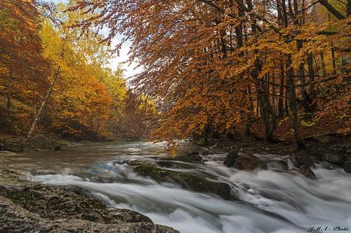 Río Arazas, otoño