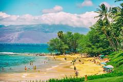 Celebrated Summer (Thomas Hawk) Tags: hawaii maui wailea beach palmtree tree fav10 fav25 fav50
