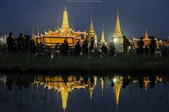 Untitled (Benzomyces) Tags: king thailand bhumibol adulyadej bangkok siriraj grandpalace people thai