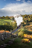 In Steam (Draws_With_Light) Tags: vegetation autumn vehicles landscape season hills lee09ndhardgrad goathland filters canoneos5dmarkiii scene fern lee105mmlandscapepolariser train fields northyorkshire tree ef1635mmf4isusm places camera