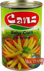 Canz Baby Corn 400gm (holylandgroup) Tags: canned fruit vegetable cannedfruit cannedvegetable nonveg jalapeno gherkins soups olives capers paneer cream pulps purees sweets juice readytoeat toothpicks aluminium pasta noodles macroni saladoil beverages nuts dryfruit syrups condiments herbs seasoning jams honey vinegars sauces ketchup spices ingredients