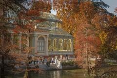 Madrid se viste de otoo (Carhove) Tags: madrid retiro parque autumn otoo park