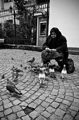 My Closest Kin (stimpsonjake) Tags: nikoncoolpixa 185mm streetphotography bucharest romania city candid blackandwhite bw monochrome woman pigeons peasant oldwoman beggar homeless