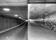 Double Tunnel (Martijn van Sabben) Tags: amsterdam adam holland noordholland bnw blackwhite blackandwhite nederland nederlandvandaag tunnel tunnelvision bestawards flickr 500px building concrete architecture ilovebuildings dof intheend theend end walls floors ceiling lights