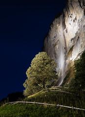 Staubbach Tree Hill (TheDailyNathan) Tags: alps berneroberland berneseoberland lauterbrunnen longexposure night staubbachfalls staubbachfall switzerland waterfall