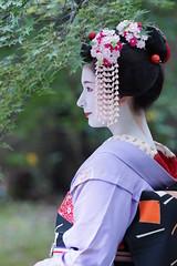 Maiko20161017_02_01 (kyoto flower) Tags: tanan fukuno kyoto maiko 20161017     yoshie