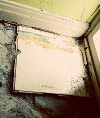 Last Tile Standing! (Georgie_grrl) Tags: ceramictiles renovation removal lasttilestanding anditsouttathere stepbystep myhome grrlpower diy lotsofsweatandhardwork chiselhammer grrlswithpowertools