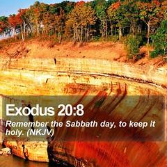 Daily Bible Verse - Exodus 20:8 (daily-bible-verse) Tags: powerful scripture savior lastdays creationofgod