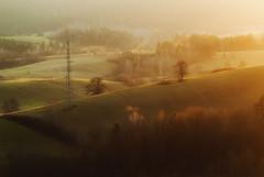 Slonne mountains (Mirek Pruchnicki) Tags: lesko województwopodkarpackie polska mountains górysłonne bieszczady bezmiechowa tree lonelytree