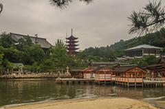 Senjokaku and Itsukushima Shrine (www78) Tags: miyajima japan senjokaku itsukushima shrine