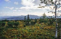 1998 Ural Mountains-14 (Alexander Kondakov) Tags: 1998 kodak kodakektachromee100vs landscape lens perm photobyalexanderkondakov russia ural uralmountains film minolta700si minoltaaf2885mmf3545 minoltaaf75300mmf4556 old