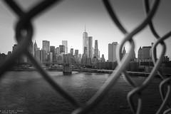 Quarantine (Dennis van Dijk) Tags: usa america unites states new york amsterdam city big apple bridge east river manhattan travel wanderer wanderlust fence quarantine bw black white cityscape skyscraper skyline canon wtc one brooklyn