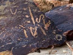 Looks like pre-Arabic writing. Any help on clarifying or correcting would be appreciated (danielbennett6) Tags: archaeology arabian arabia saudi preislamic prearabic bronzeage petroglyph rockart script ancient grafitti desert qirw