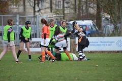 DSC_8897 (mbreevoort) Tags: rfchaarlem rugby rcthedukes brcbreda dioklrc thepickwickplayersdrc hookers goudarfc