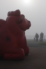 Sitting Bull of Otterspool (Towner Images) Tags: mistry dhruvamistry sculpture bull sittingbull otterspool liverpool fog mist rivermersey red artist sculptor towner townerimages brahma brahman zebu cattle kankrej ongole gir gyr crossbreed promenade wideeyed docile bosindicus taurus