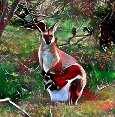 hoPpy-holidays (artyfishal44) Tags: hoppyholidays kangaroo joey christmas holidays friendship digital2016 surreal artyfishal44 jim photoshop digital art abstract awardtree hypothetical illusion perception dreamteacher youniverse colourtheory newreality mindtraveller nature choice change downunder catdoorman wideawakedreamer dangertoshipping gravitydefying sotn