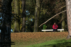 ahead behind (zoomseb) Tags: autum herbst bunte bltter leaves color yellow sunny park potsdam sansoucci red rot grn green man woman moving sitting ahead behind trees tree bume baum