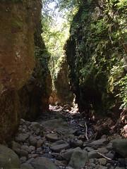 013Tarjnka-szurdok (ossian71) Tags: magyarorszg hungary mtra termszet nature tjkp landscape szurdok canyon