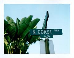 8 23 laguna beach ca pacific coast highway sign (EllenJo) Tags: california ca green polaroid august roadtrip highway1 roadsign lagunabeach pacificcoasthighway bananapalm 2015 instantfilm northcoasthighway fujifp100c fujiinstantfilm ellenjo summerincalifornia ellenjoroberts polaroidpathfinder californiaonfilm rollfilmcameraconvertedtopackfilm convertedpathfinder