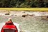 British Columbia Luxury Fishing & Eco Touring 42
