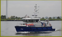 Dutch Police P96. (NikonDirk) Tags: holland water netherlands dutch port river boot bay harbor boat riot nikon marine ship foto cops harbour nederland police vessel national maritime agency cop infrastructure dvp nautical naval haringvliet infra damen dwp willemstad seaport hollands p31 unit dsp rhib diep rvp politie 2505 dienst landelijke rivier eenheid constables infrastructuur patrols zhp klpd zeehaven waterpolitie spopo zeehavenpolitie p96 hulpverlening rivierpolitie nikondirk stanpatrol