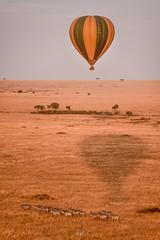 DSC_1663 (Jorge kaplan) Tags: africa kenia kenya nikkor nikon 28300mm safari d750 masai masaimara mara paisaje landscape