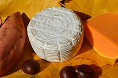 Quesucos de Libana (Ricard2009 (Mart Vicente)) Tags: cheese queso queijo sir fromage ost formaggio sajt kaas  caws  formatge peynir gazta      brnz sris ilobsterit