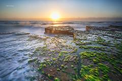 sunrise Turimetta (Alex cheong) Tags: seascape rock sunrise landscape sony sydney nsw a7r turimetta sonya7r fe1635mm