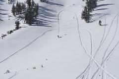 SnowMo IV 2013 036