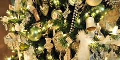 Someday At Christmas (EDWW day_dae (esteemedhelga)) Tags: santa christmas xmas holiday snow stockings st bells festive reindeer snowflakes snowman globe poinsettia illuminations garland holly scrooge nicholas elf wreath evergreen ornaments angels tinsel icicle manger yule santaclaus mistletoe nutcracker cheer jolly christmastrees happyholidays bethlehem merrychristmas bauble rejoice goodwill partridge elves yuletide caroling holidayseason carolers seasongreetings merrifieldgardencenter edww christchild daydae esteemedhelga jesus hohoho gingerbread wrappingpaper giftgiving joyeuxnoel northpole holidaydecornativity sleighride artificialtree candycane feliznavidadfrostythesnowman kriskringle sleighbells stockingstuffer wisemen twelvedaysofchristmas winterwonderland