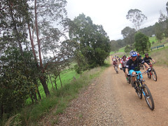 Mount Greville Road (Neil Ennis) Tags: cycling scenic trail national mtb rim bicentennial bnt scenicrimxcnov15