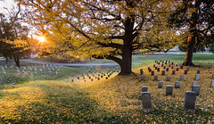 A Golden Quilt of Comfort (Ms Stacy) Tags: sunset cemetery grave soldier golden war glow honor civilwar unknown vicksburg 2015 nationalcemetery