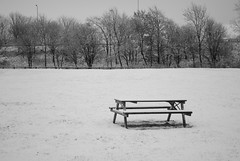 Snow picnic in Kinross (zawtowers) Tags: november white snow black monochrome bench scotland picnic no sunday solo 29 solitary midday kinross 2015