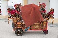 Toto Tigro, dick et Gypsy (gigile) Tags: red france rot animal rouge adorable vermelho kawaii concept cuteness rosso mignon  saintesmariesdelamer   crveno provencealpesctedazur  kawaisa