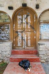 Dog Awaiting its Master - Aguas Calientes Peru (Don Thoreby) Tags: door dog peru machu picchu vintage machupicchu aguas doorstep aguascalientes peruvian hostels clientes