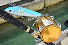 Seuelo mordido (Quico Prez-Ventana) Tags: pescadeportiva biggame fishing seuelo artificial muestra curricn estrecho gibraltar