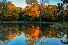 Golden Moments in Autumn (Cole Chase Photography) Tags: autumn fall autumncolors fallcolors reflections canon eos5dmarkiii iowa
