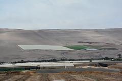 hillside field with fog-catching diffuser (cam17) Tags: arica chile aricachile fogcatcher garuacatcher irrigationsystem fogcatchingnet atacamadesert atacama hillsidefield netcoveredfield diffusers