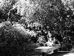 Reading at the garden (pedrosimoes7) Tags: reading lendo lisant reader leitor lecteur books livros livres street