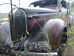 000415#02_Gunner (stacy metcalf) Tags: 38 1938 plymouth ratrod streetrod rust patina abandoned gunner