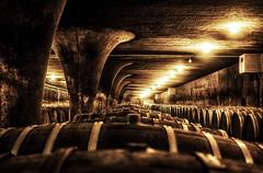 vinery; trier_germany (eks-i zb) Tags: vinery vine germany trier architecture raster light drama