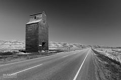 Grain Elevator (BW) (torobala) Tags: alberta canada prairie nikon d3200 monochrome blackandwhite road landscape elevator dorothy abandoned urbex
