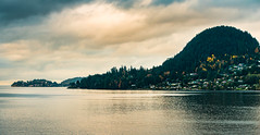 The Sunshine Coast, BC (Isaac Hilman (@lifeofisaac)) Tags: sechelt gibsons bc sunshinecoast langdale ferry canada nikon d800 70200mm morning light muted colors fall yellowleaves water ocean