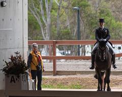 161020_Aust_D_Champs_Thu-5935.jpg (FranzVenhaus) Tags: athletes dressage australia siec equestrian riders horses performance event competition nsw sydney aus