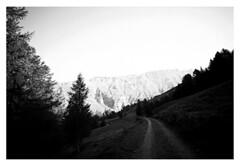 into the morning sun (fluffisch) Tags: fluffisch heiligenblut kärnten austria alps hohetauern carlzeiss biogon21mm zeissbiogon21mmf28 wide g21 g2 35mm negativ rangefinder messucher analog film bw adox cms20 contaxg2